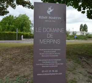 Cognac, Tenuta Remy Martin, visite