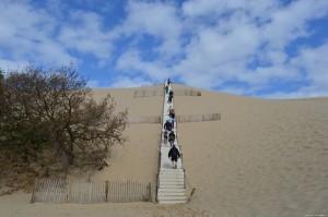 Duna di Pilat, scalinata