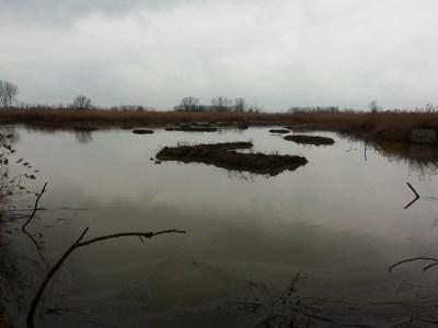 oasi di manzolino