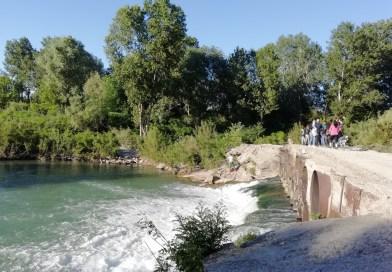 Golena San Vitale : la natura selvaggia a due passi dalla città
