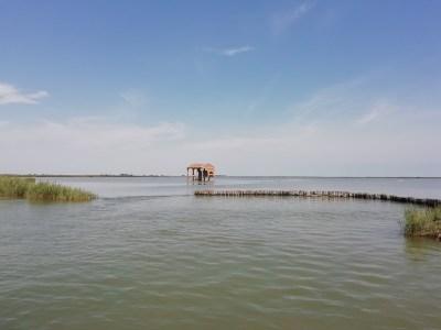 delta del po e valli di comacchio in barca