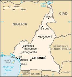 Camerun 2008/2009