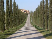 Castiglione01