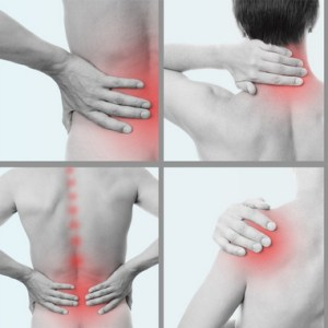 Where i can find physiotherapy clinic in Sheikh Zayed?
