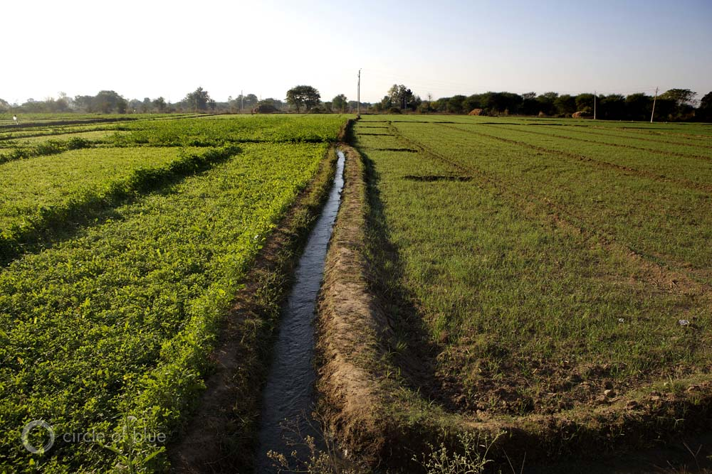 Agricultural Irrigation Canal : Just outside the punjab village of parchh both nagh singh