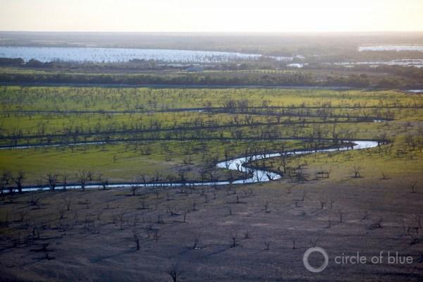 2008-12 Australia Murray Darling JCGanter IMG_7398