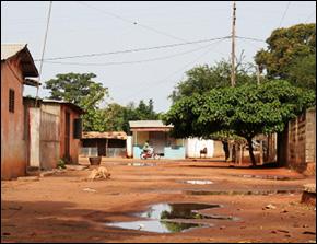 Zimbabwe Cholera Outbreak