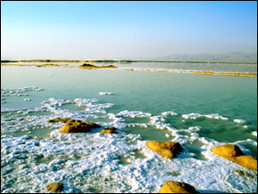 The Dead Sea's Salt Encrusted Shore