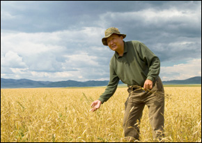 Food Supplies in an Era of Climate Change