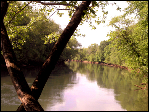 Chattahoochee River Stakeholders Create Organization to Resolve Southern US Water Conflict
