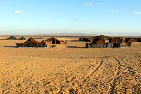 Bedouin camp in the Sahara