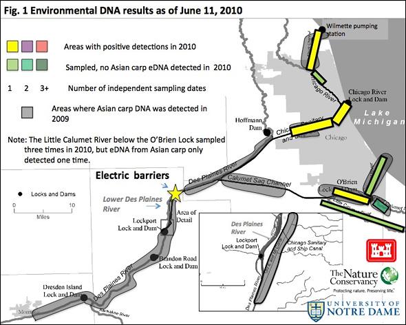 Asian Carp DNA Map