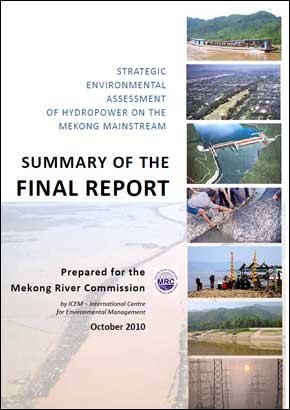 strategic environmental assessment report