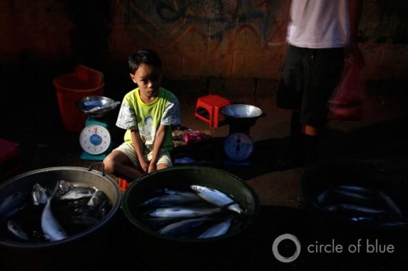 beggar begging for food streets of Manila East Zone selling fish Cuatro school education health water privatization philippines squatter village slum informal community