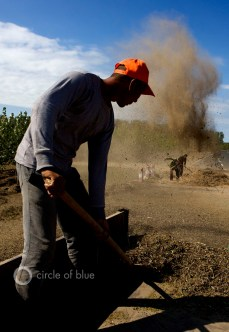 China farmers winnow harvest green beans Tongyu County Jilin Province