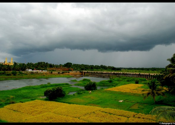 cauvery river, drought, india, water conflict