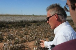 Cotton irrigation agriculture research USDA Texas