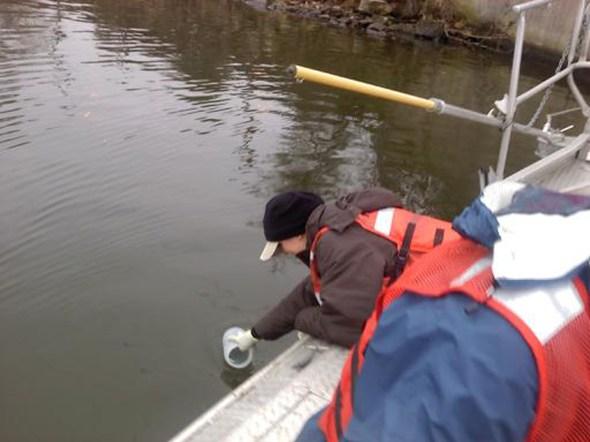 Asian carp eDNA sampling Kelly Baerwaldt invasive species