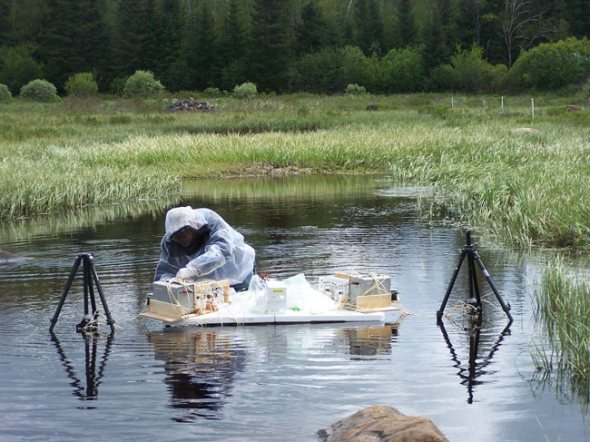 U.S. Geological Survey scientist Jud Harvey is shown sampling the Six-Mile Brook streambed for mercury contamination in Adirondack State Park, New York.