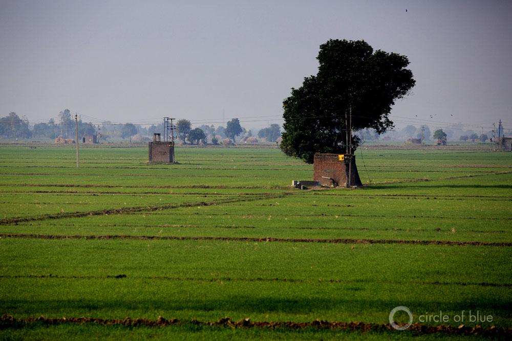 punjab area of india