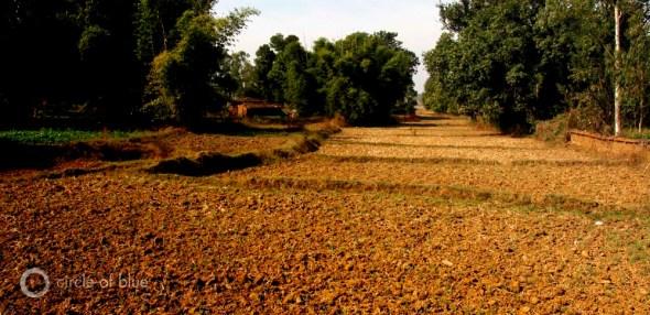 India village Khondla Chhattisgarh rice farm farming farmer BAIF Bharatiya Agro Industries Foundation Ambikapur groundwater recharge conservation food production pilot project water food energy choke point circle of blue wilson center aubrey ann parker