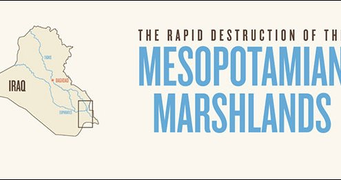 The Rapid Destruction of the Mesopotamian Marshlands