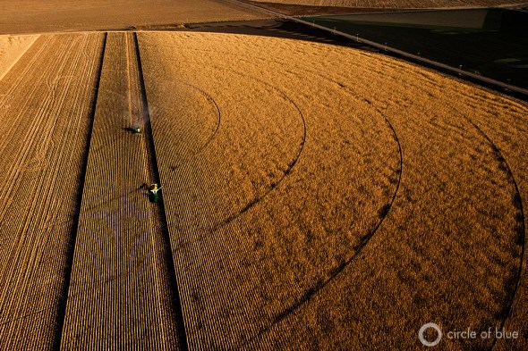 Great Plains Kansas Ogallala Aquifer groundwater management LEMA irrigation farming agriculture