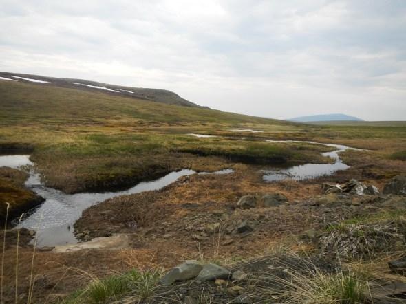 Beaded stream Alaska Arctic climate change Imnavait Creek