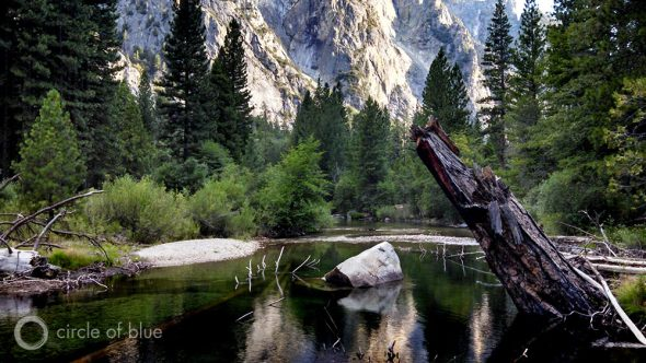 California Kings River climate change global warming Sierra Nevada river flow forest runoff