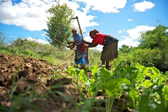 Kenya farmers drought climate change