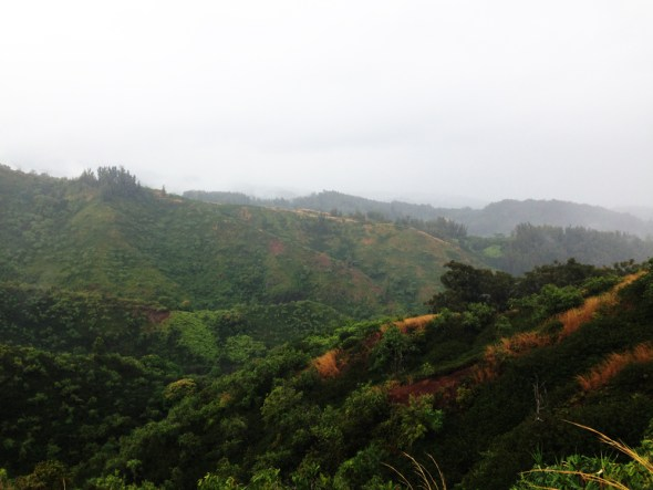 Hawaii Oahu forests watershed erosion invasive species water