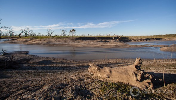 Australia Darling River Menindee New South Wales driftwood drought water buyback ecosystem restoration J. Carl Ganter Circle of Blue