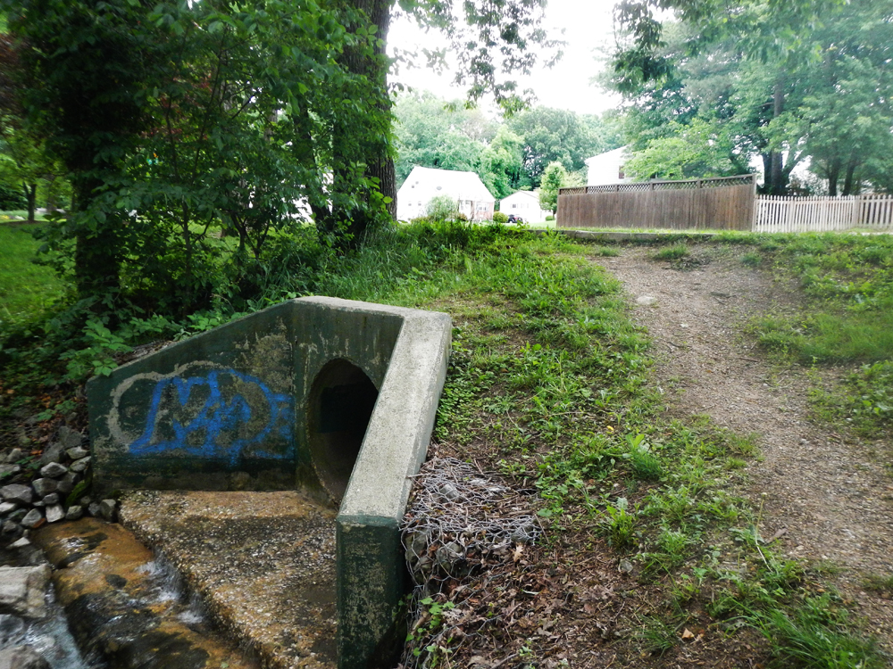 Stormwater Runoff Pollution : While south carolina floods u s wrestles with urban