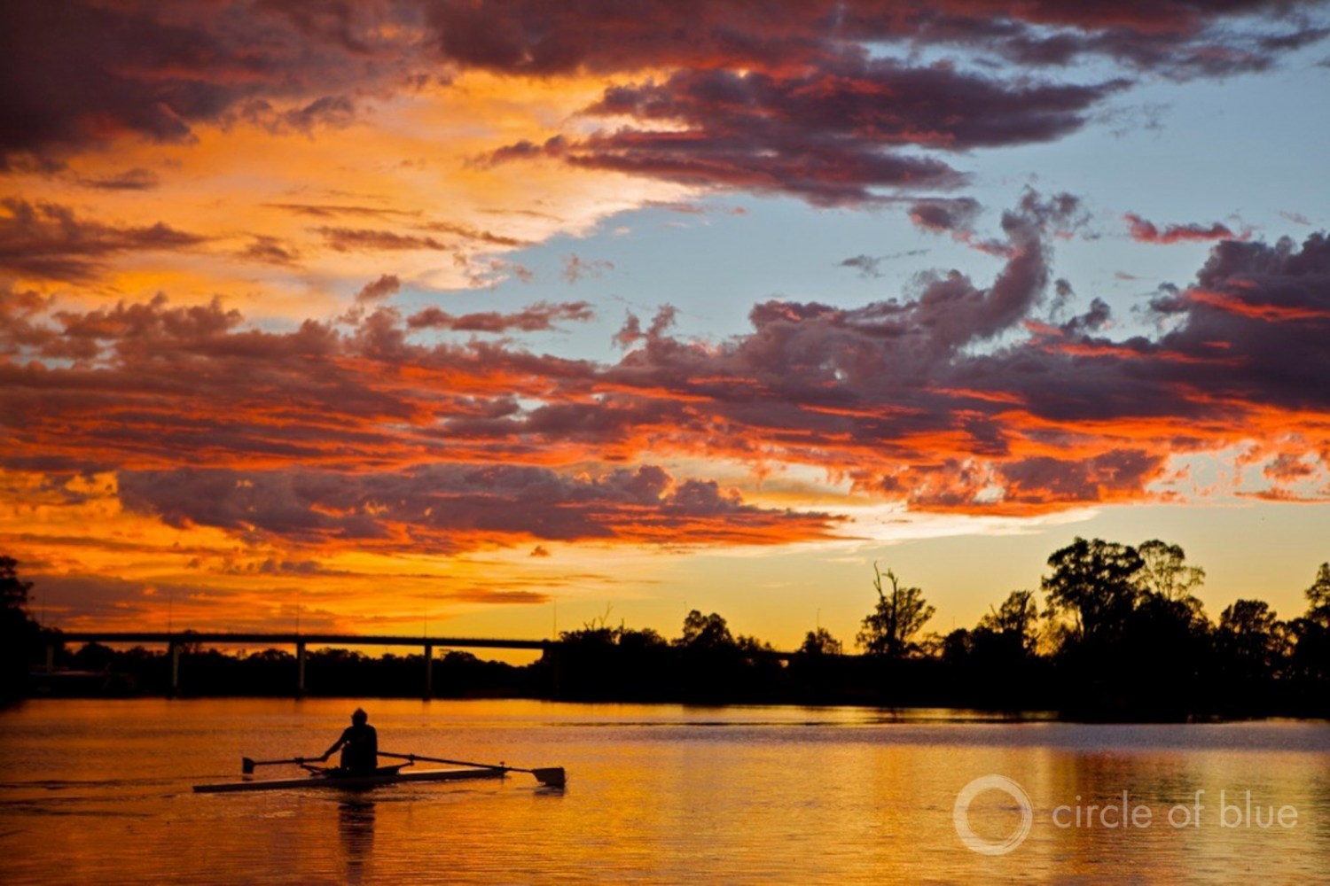 A rower in Mildura, Victoria enjoys a tranquil Murray River. Driven by heat and dry weather, a bloom of potentially toxic algae covers more than 500 kilometers of the river's water this year. Photo © J. Carl Ganter / Circle of Blue