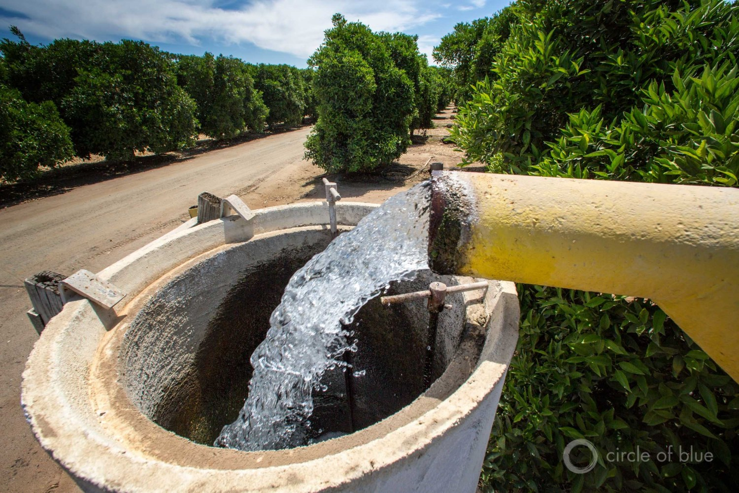 Water is pumped from a groundwater well for farm irrigation in Kern County, California.