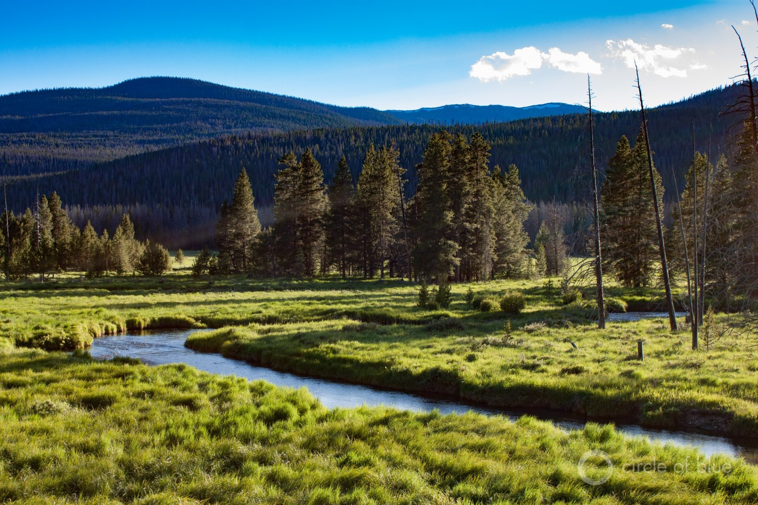 The Colorado River headwaters in Rocky Mountain National Park. Photo © Brett Walton / Circle of Blue
