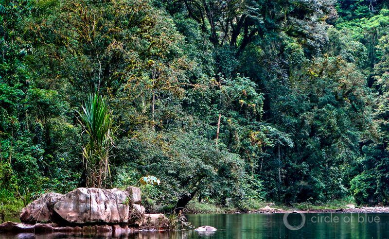 This free flowing bend on the Changuinola River in western Panama is the site of a planned 214-megawatt dam that is actively opposed by local villagers. Construction of the dam has not started. Photo © Keith Schneider / Circle of Blue