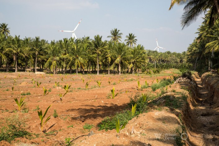 2017-01 India Tamil Nadu DMalhotra_C4A6878-2500