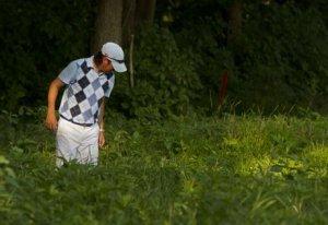 golf weeds