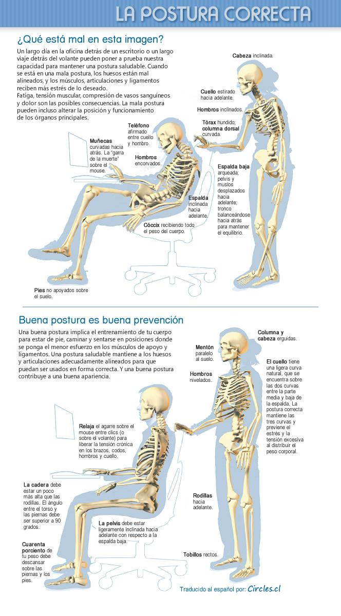 Buena Postura Infografía