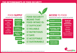 Determinants of Food Security - SecondBite