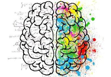 La connessione della creatività artistica e scientifica