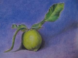 Clara: Primo studio di natura morta effettuato a pastelli secchi su carta grigia. febbraio 2012