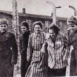 1945-2014: Giornata della Memoria