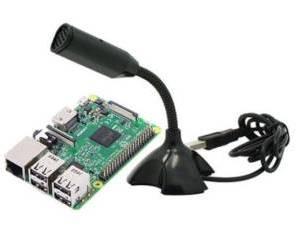 Microfono porta USB per Raspberry PI