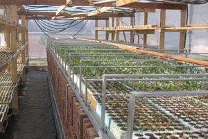 18 borse di studio sull'agricoltura sostenibile ISPA CNR