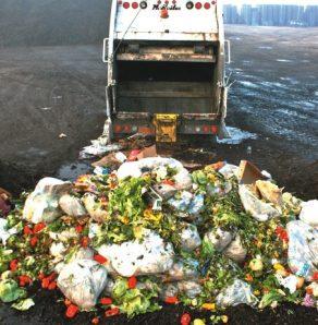 Shocking-food-waste