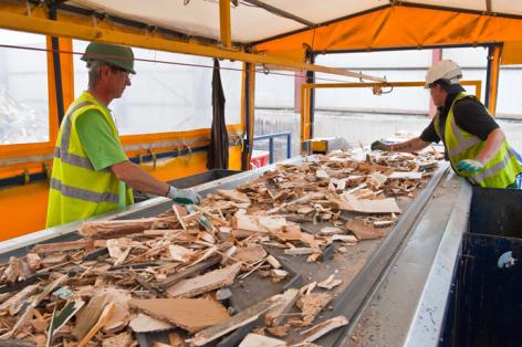 wood-sorting