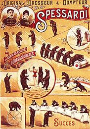 Spessardi et ses ours - Année 1902 Cirque