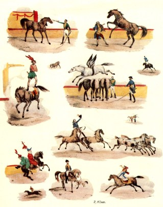 Jeux équestres par Adams - cheval au Cirque